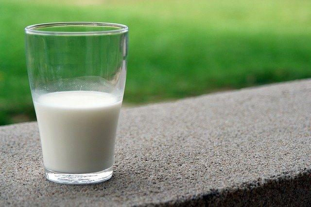 leche de vaca vs leche de avena