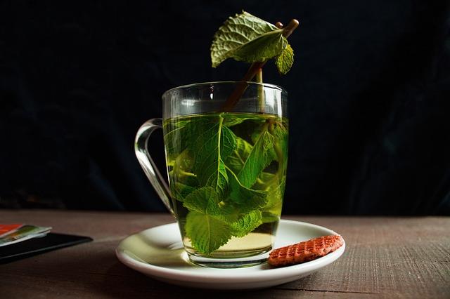 como tomar te verde para adelgazar